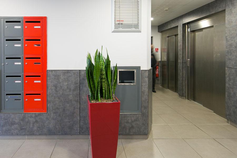 plante, ascenseur